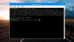 Terminal ejecutando la actualización de Raspbian