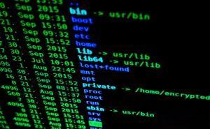 Terminal de Linux con el comando ls -lejecutado