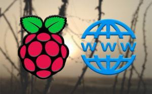 Logo de Raspberry Pi y logo con WWW y una bola del mundo