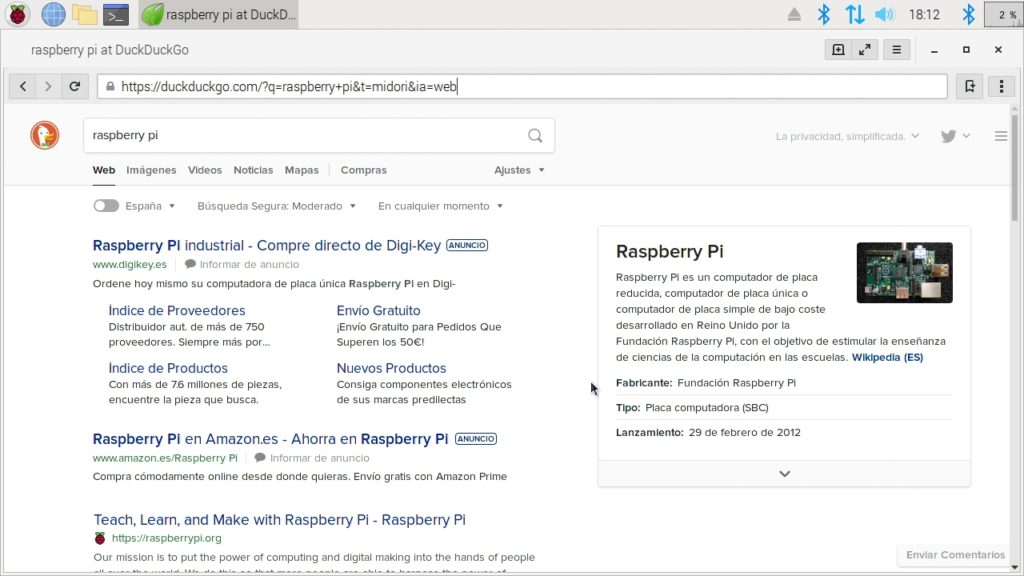 Navegador web Midori funcionando en Raspbian