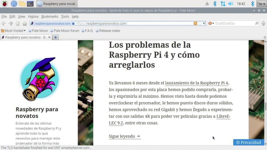 Navegador web Pale Moon funcionando en Raspbian