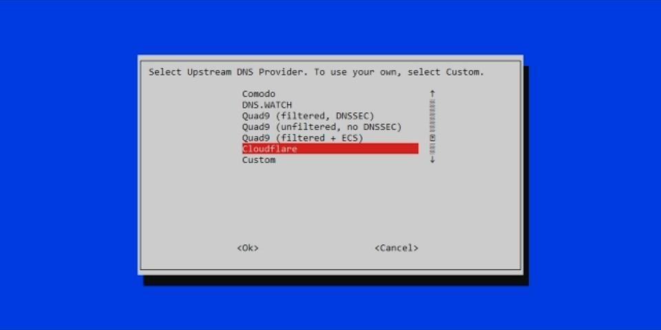 Eligiendo los servidores DNS para usar con Pi-hole