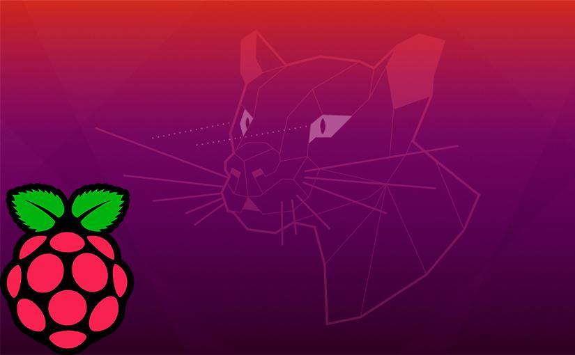 Ubuntu 20.04 LTS viene para quedarse en nuestra Raspberry Pi por lo menos 2 años