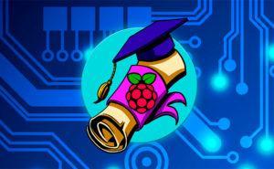 Logo de Raspberry Para novatos