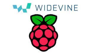 Ver Netflix en Raspberry Pi